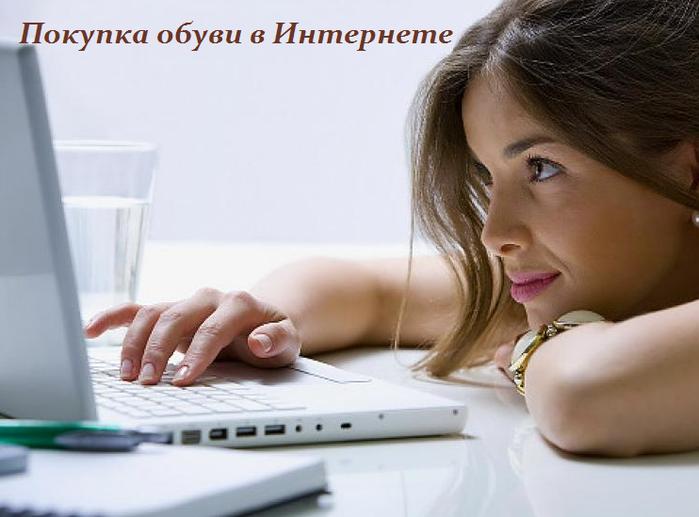 2749438_Pokypka_obyvi_v_Internete (700x517, 343Kb)