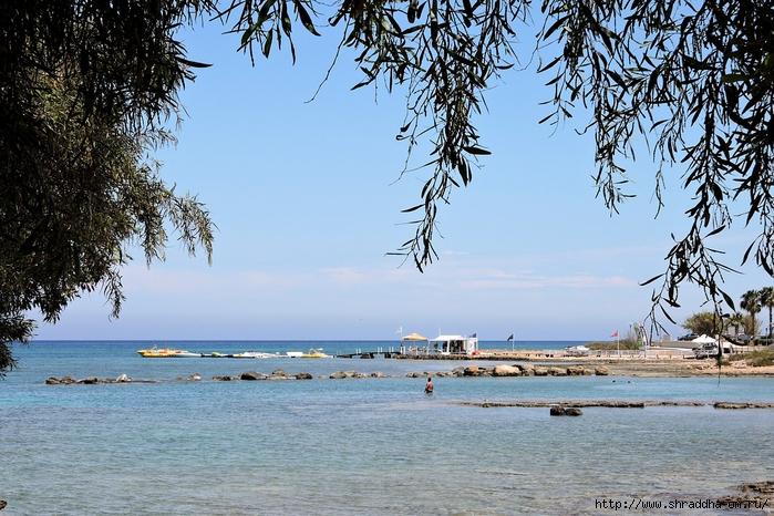 Кипр, май 2016 (141) (700x466, 340Kb)