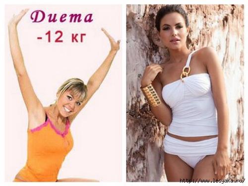 3925073_dieta12kg1 (500x375, 103Kb)