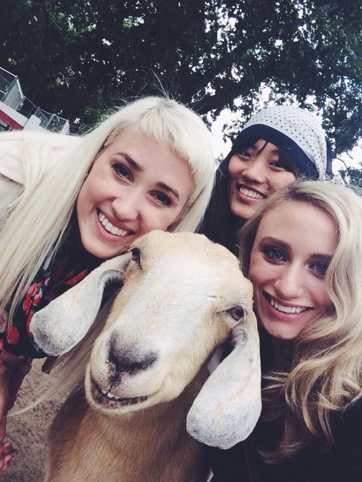 Девушки с козой занимаются йогой!