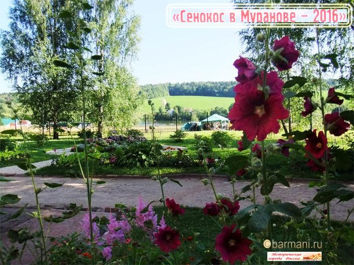 Сенокос в Мураново сайт Бармани 2016 м  (700x525, 192Kb)
