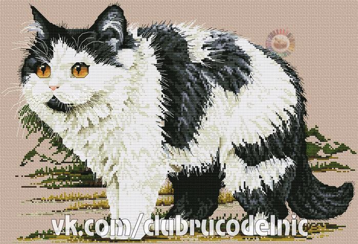 The Persian Cat (700x476, 512Kb)