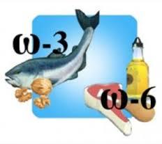 5239983_omega3_i_omega6 (232x207, 6Kb)
