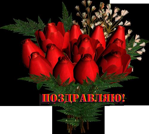 розы1 (500x450, 288Kb)