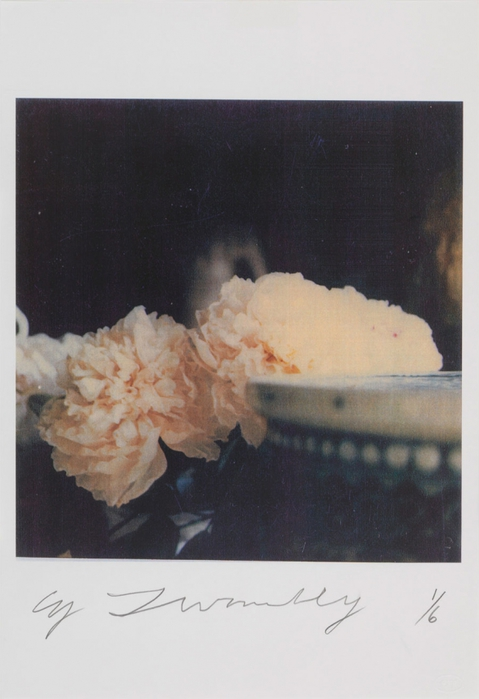 5187787_pionCY_TWOMBLY2 (479x700, 179Kb)