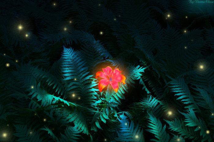 fern_flower_by_darrachese-d5idqe5 (700x466, 87Kb)
