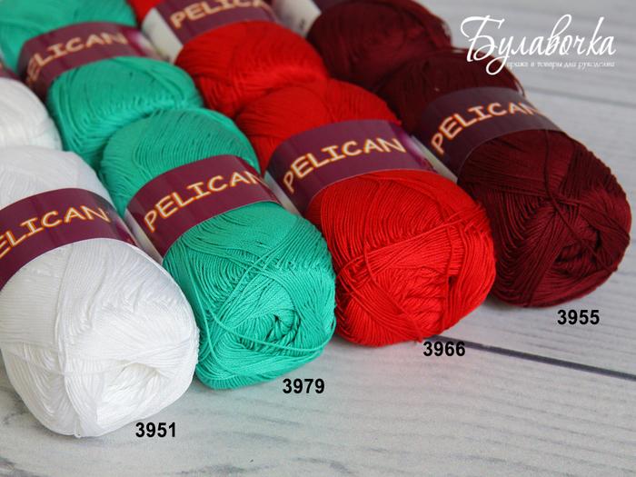 Pelican02 (700x525, 523Kb)