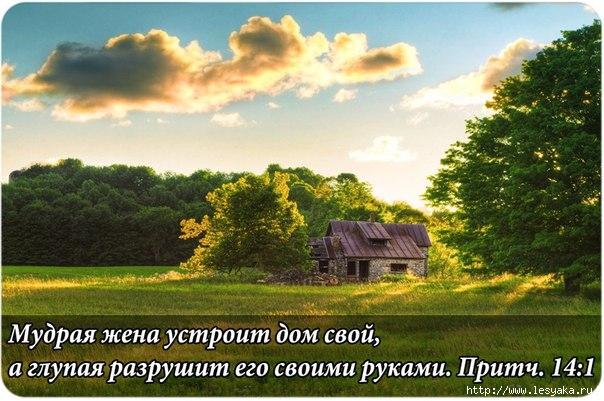 3925073_HR__Qz8giQo (604x401, 172Kb)