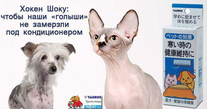 FB_IMG_1469045197672 (700x369, 33Kb)