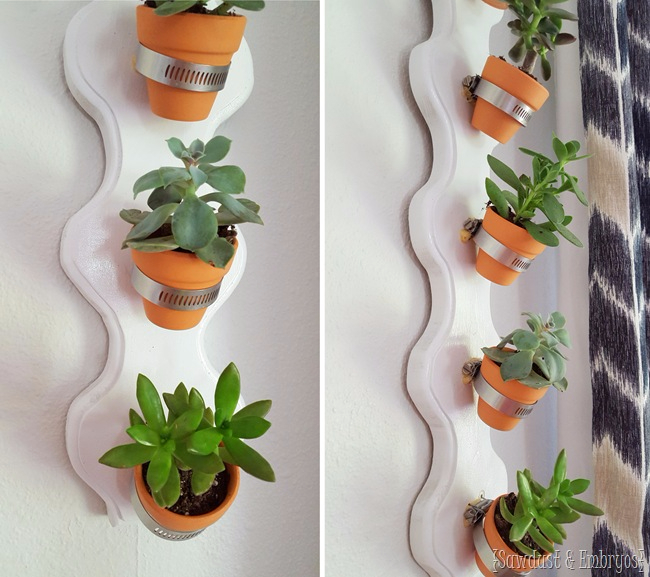 DIY-Vertical-Succulent-Planter...-so-simple-Sawdust-and-Embryos (650x577, 314Kb)