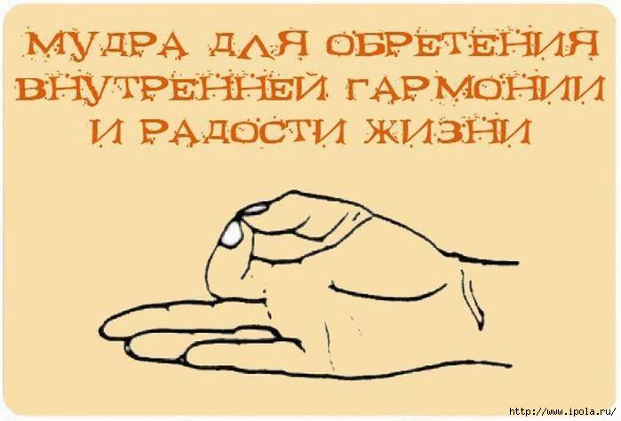 2835299_Izmenenie_razmera_Mydri__ioga_dlya_palcev (700x474, 102Kb)