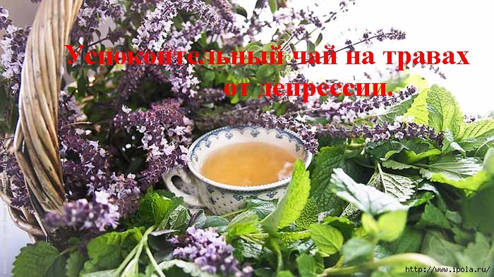 "alt=""Успокоительный чай на травах от депрессии.""/2835299_Yspokoitelnii_chai_na_travah_ot_depressii_ (700x393, 232Kb)"