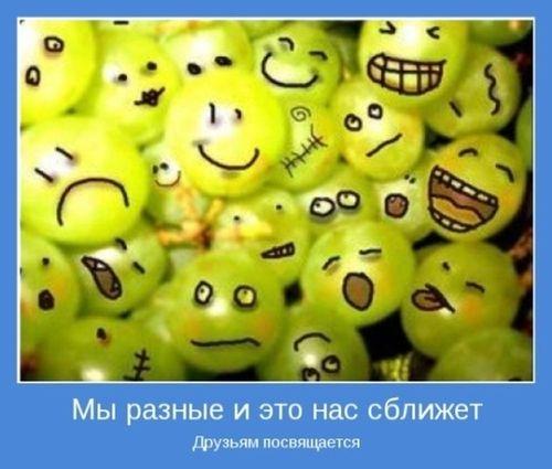 bc8e2c7af0183541eea16ad718d (500x425, 111Kb)