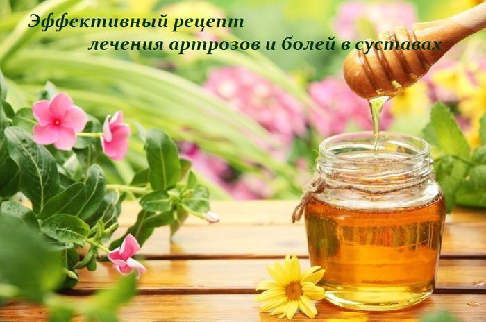 2749438_Effektivnii_recept_lecheniya_artrozov_i_bolei_v_systavah (700x464, 487Kb)