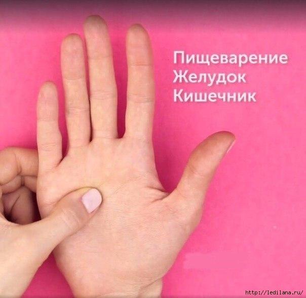 3925311_5_aktivnih_tochek_na_ladonyah (604x587, 119Kb)