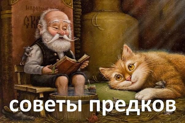 4199468_imageGL64AKOS (604x403, 77Kb)