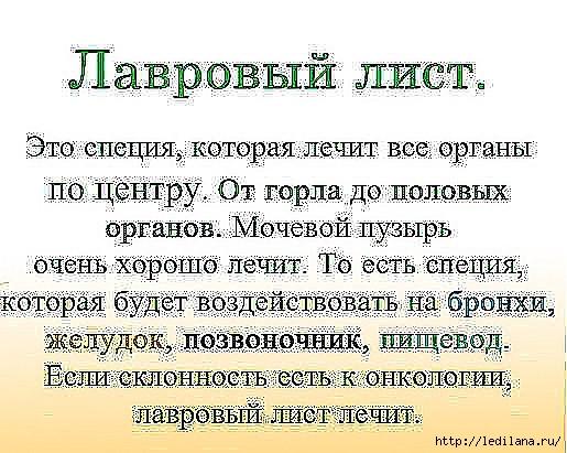 3925311_lavrovii_list_ (515x411, 174Kb)