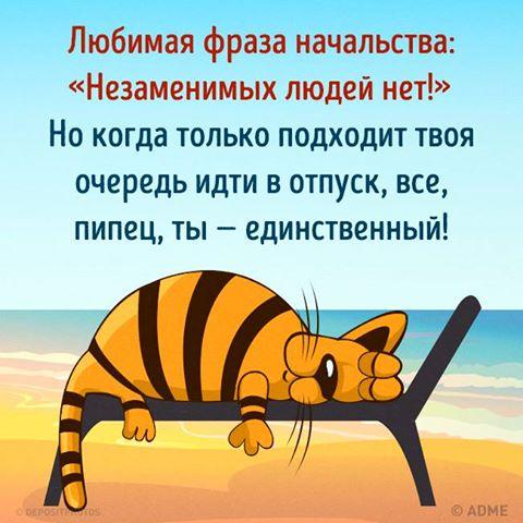 13776009_10153814748735172_8899855344978295211_n (480x480, 41Kb)