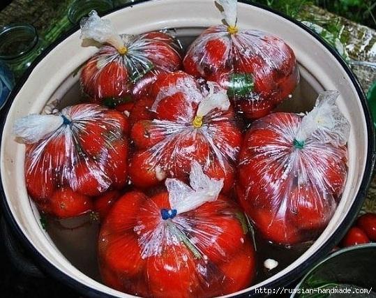 Как засолить помидоры в пакетах (3) (539x427, 221Kb)