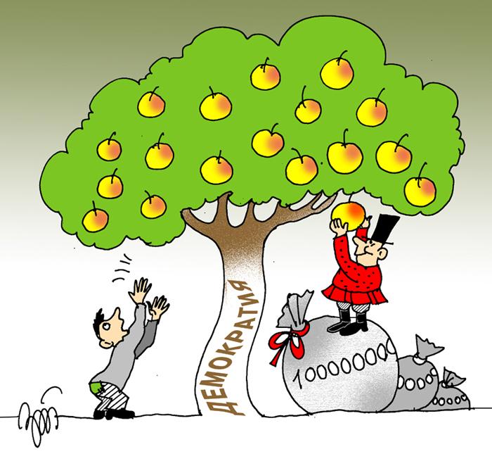 плоды (700x655, 315Kb)