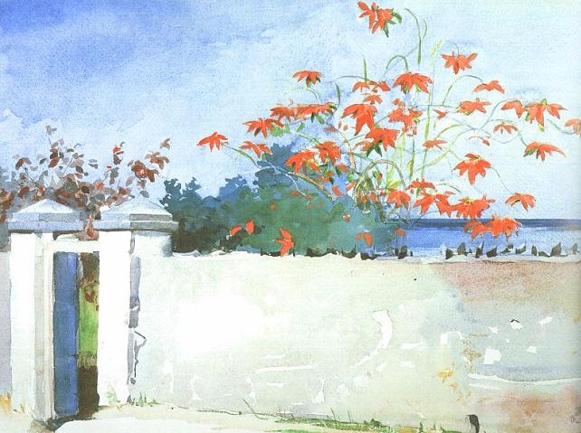 A Wall, Nassau, 1898 (642x479, 386Kb)
