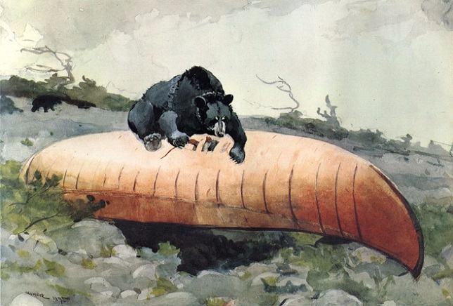 Bear and Canoe, 1895 (644x436, 274Kb)