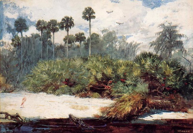 In a Florida Jungle, 1885–86 (648x448, 365Kb)