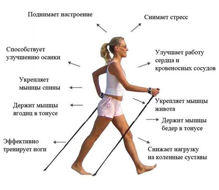 Борисова объяснила, финская ходьба с палками техника инженер-электрик