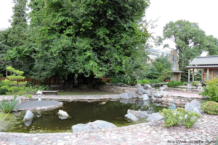 Спб, Ботанический сад (1) (700x466, 412Kb)