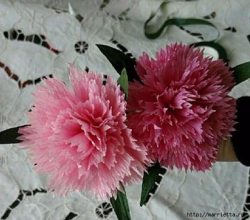 Цветы из гофрированной бумаги - ГВОЗДИКИ (8) (498x439, 146Kb)