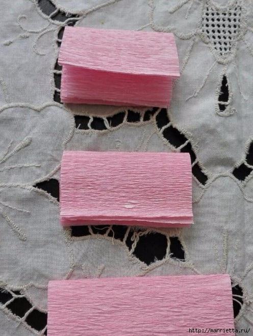 Цветы из гофрированной бумаги - ГВОЗДИКИ (11) (496x659, 214Kb)