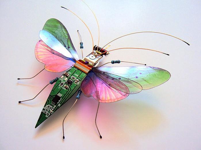 Джули Элис Чапелл: насекомые из старых компьютерных деталей