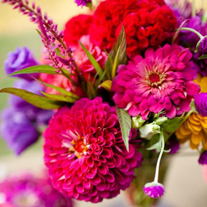цветы августа 1 (700x700, 530Kb)
