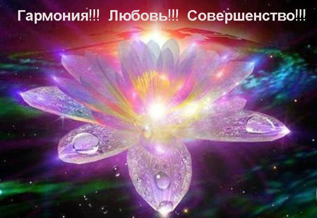 В-НАШ-СЕАНС (650x448, 84Kb)