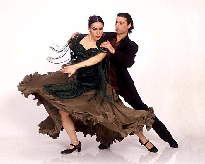 ! flamenco (700x562, 291Kb)