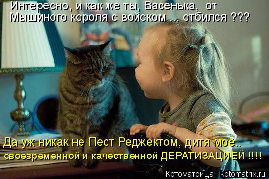 kotomatritsa_J (548x366, 235Kb)