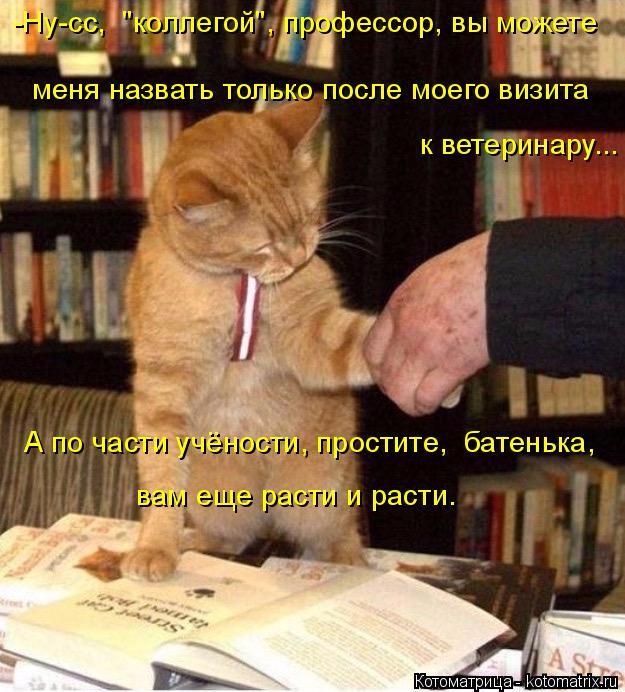 kotomatritsa_K (1) (625x692, 421Kb)