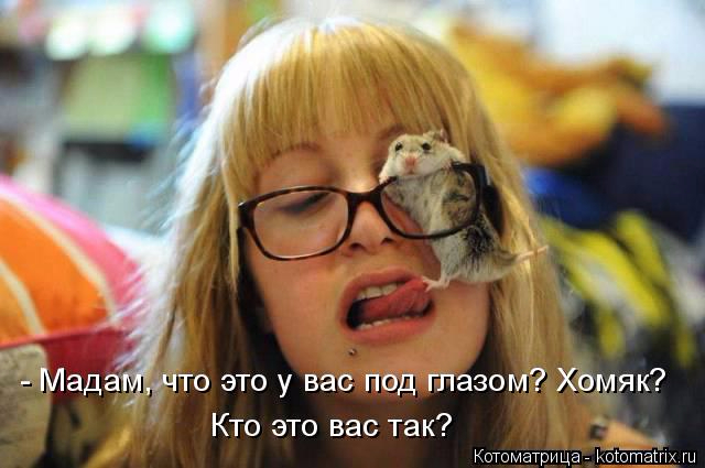 kotomatritsa_s (640x425, 227Kb)