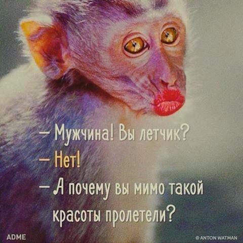 130895553_image__4_ (480x480, 179Kb)