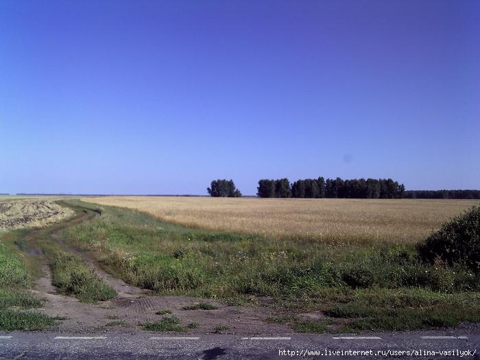 PICT0001 (700x525, 300Kb)