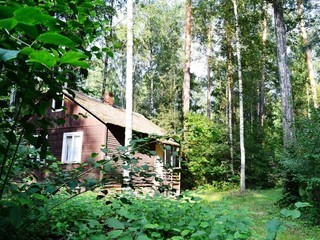 uchastok-zavety-ilicha-ulica-osipenko-144274134-2 (320x240, 40Kb)