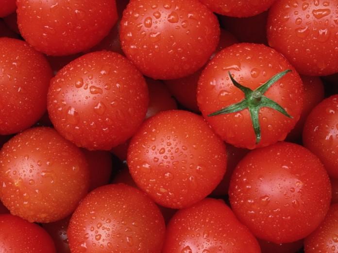 4208855_pomidory696x522 (696x522, 91Kb)
