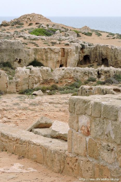 Кипр, май 2016 (192) (466x700, 334Kb)