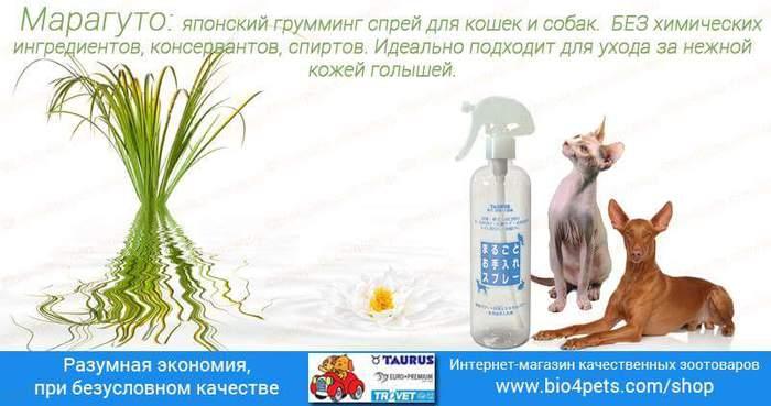 FB_IMG_1471896933744 (700x369, 37Kb)
