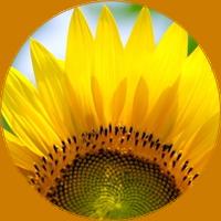 circle (2) (200x200, 64Kb)