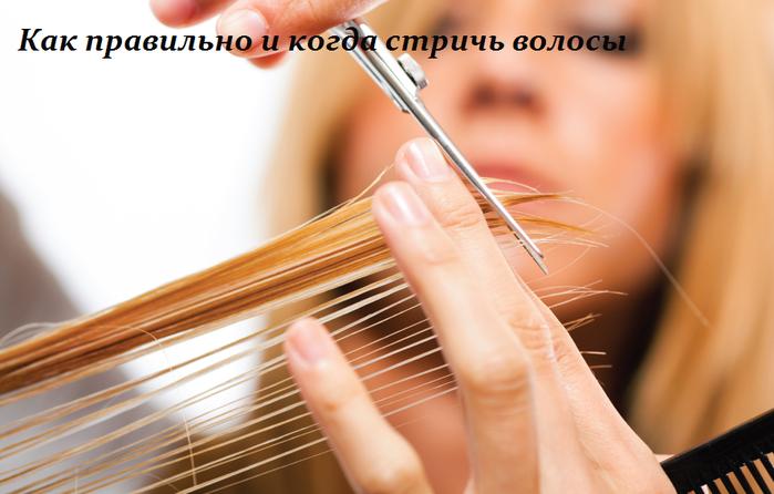 2749438_Kak_pravilno_i_kogda_strich_volosi (700x446, 395Kb)