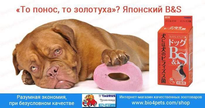 FB_IMG_1471985731982 (700x369, 36Kb)