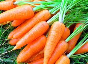 морковь сушеная 1 (294x215, 99Kb)