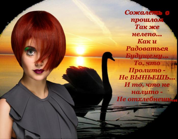 5252596_sojalet_o_proshlom (700x545, 541Kb)