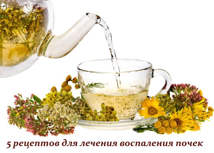 2749438_5_receptov_dlya_lecheniya_vospaleniya_pochek (700x499, 384Kb)